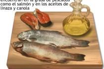 Acidos grasos para cuidar la salud