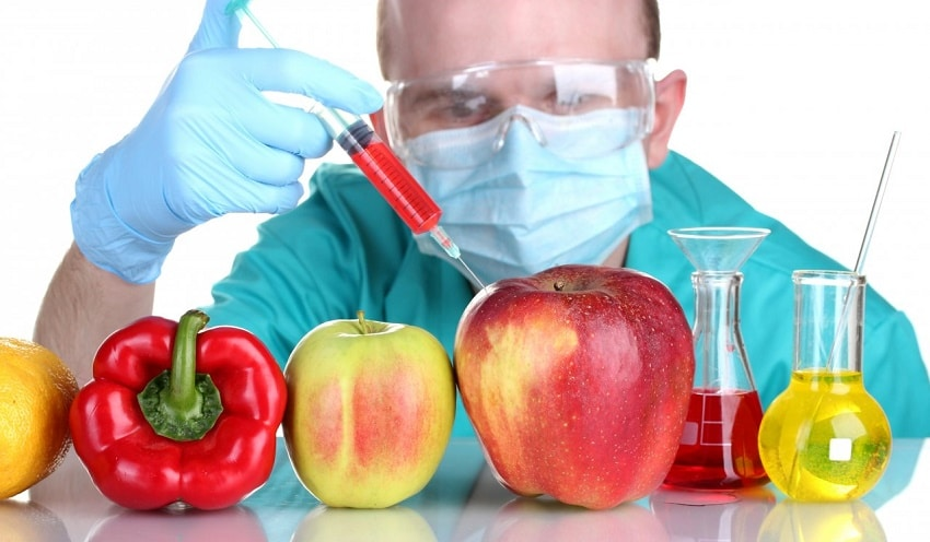 alimentacion industrial vs alimentacion biologica