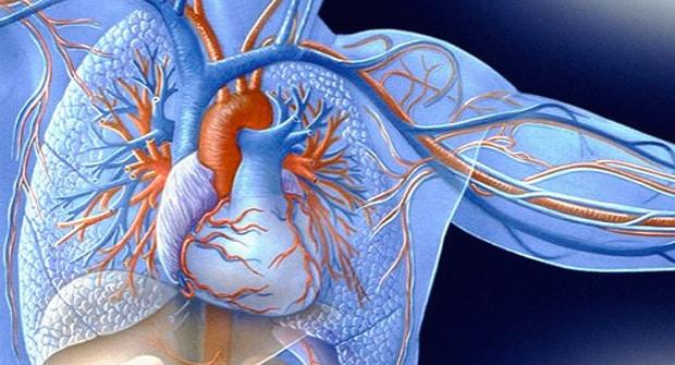Enfermedades cardiacas y de las arterias