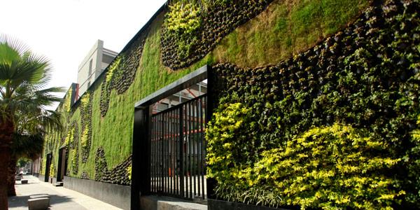 Como crear un jard n vertical sobre paredes internas o for Como se construye un jardin vertical