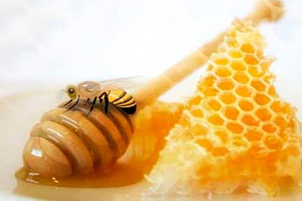 propiedades de la miel de abeja para adelgazar