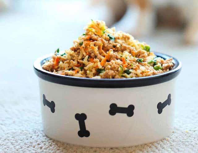 5 alimentos que tu perro puede comer sin riesgos - Alimentos recomendados para perros ...